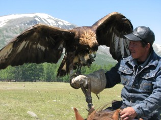 Kazakh Eagle Hunter - Altay Mountains, Bayan Olgii Aimag