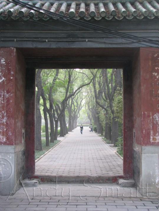 Beijing - Ritan Park