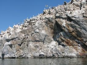 Stone Island - Lake Khovsgol Nurr